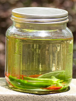 Jalepeno Infused Tequila